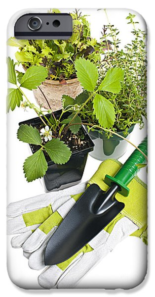 Gardening Tools And Plants IPhone 6s Case by Elena Elisseeva
