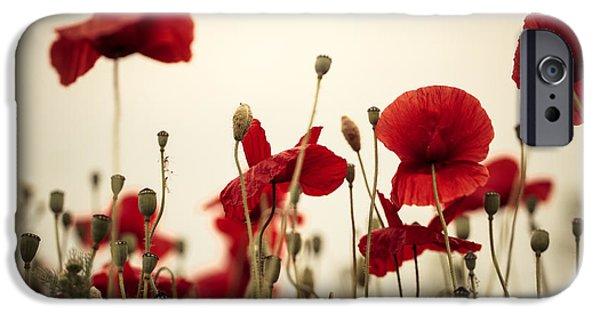 Poppy Flowers 03 IPhone Case by Nailia Schwarz