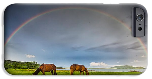 Rainbow Horses IPhone Case by Evgeni Dinev