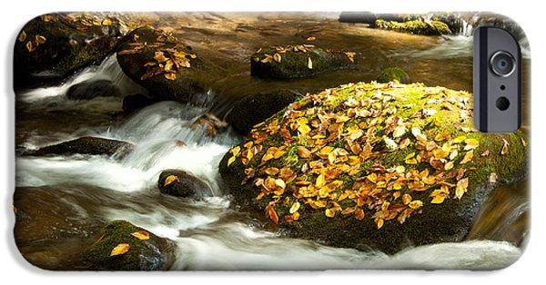 Autumn Stream IPhone Case by Lena Auxier