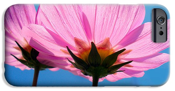 Cosmia Flowers Pair IPhone Case by Sumit Mehndiratta