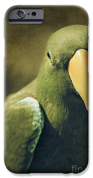 Moments Like These IPhone Case by Sharon Mau