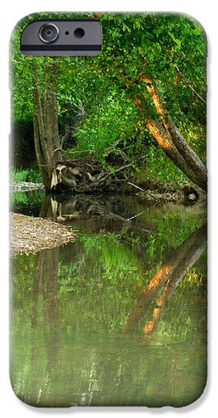 Peaceful Pond IPhone Case by Douglas Barnett