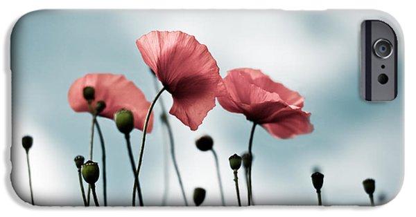 Poppy Flowers 07 IPhone Case by Nailia Schwarz