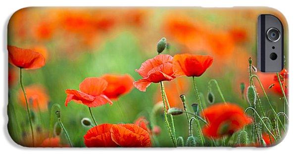 Red Corn Poppy Flowers 03 IPhone Case by Nailia Schwarz