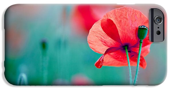 Red Corn Poppy Flowers 04 IPhone Case by Nailia Schwarz
