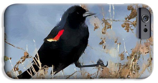 Redwing Blackbird IPhone 6s Case by Betty LaRue