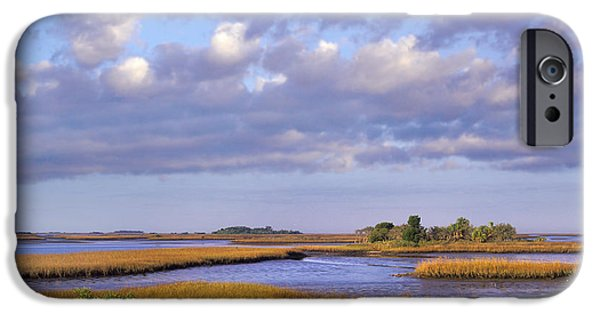 Saltwater Marshes At Cedar Key Florida IPhone Case by Tim Fitzharris