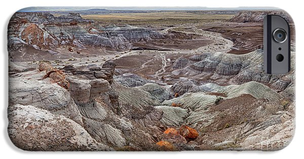 Stormy Morning At Petrified Forest  IPhone Case by Sandra Bronstein