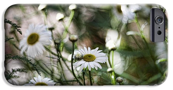 Wild Daisies IPhone Case by Bonnie Bruno