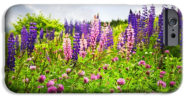 Wildflowers In Newfoundland IPhone Case by Elena Elisseeva
