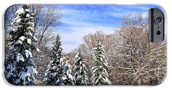 Winter Forest With Snow IPhone Case by Elena Elisseeva