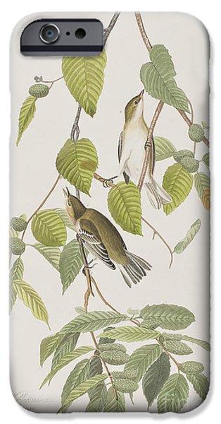 Autumnal Warbler IPhone 6s Case by John James Audubon
