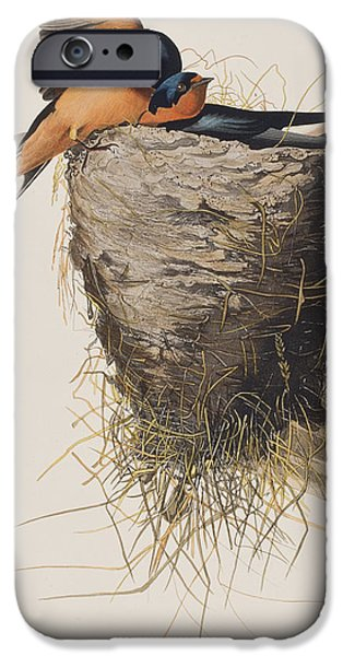 Barn Swallow IPhone 6s Case by John James Audubon