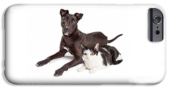 Beautiful Large Labrador Retriever Crossbreed Dog IPhone Case by Susan  Schmitz