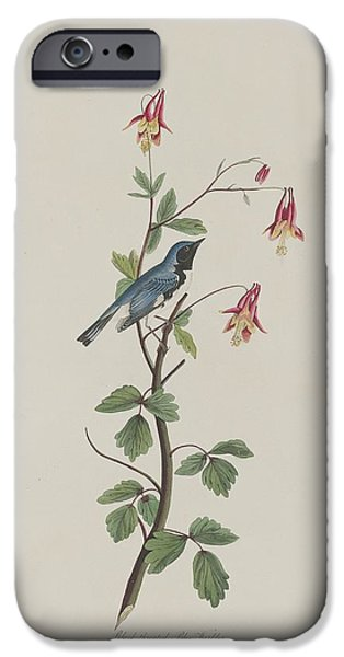 Black-throated Blue Warbler IPhone 6s Case by John James Audubon