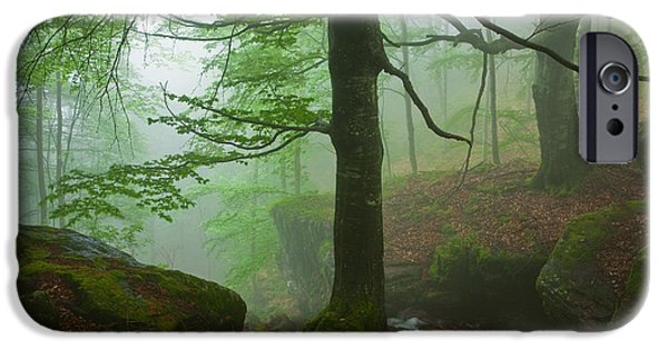 Dark Forest IPhone Case by Evgeni Dinev