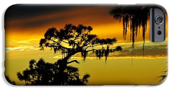 Central Florida Sunset IPhone Case by David Lee Thompson