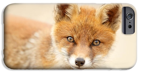 Foxy Face IPhone Case by Roeselien Raimond