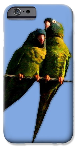 Green Parrot IPhone Case by W Gilroy