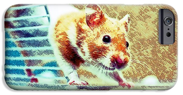 Hamster IPhone Case by Tom Gowanlock