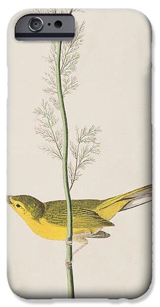 Hooded Warbler IPhone 6s Case by John James Audubon