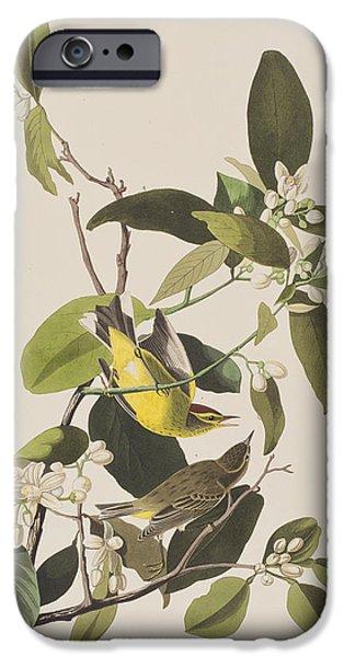 Palm Warbler IPhone 6s Case by John James Audubon