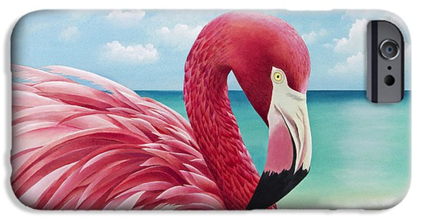 Pretty In Pink IPhone Case by Carolyn Steele