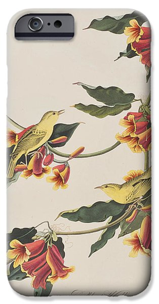 Rathbone Warbler IPhone 6s Case by John James Audubon