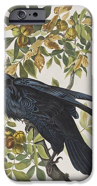 Raven IPhone 6s Case by John James Audubon