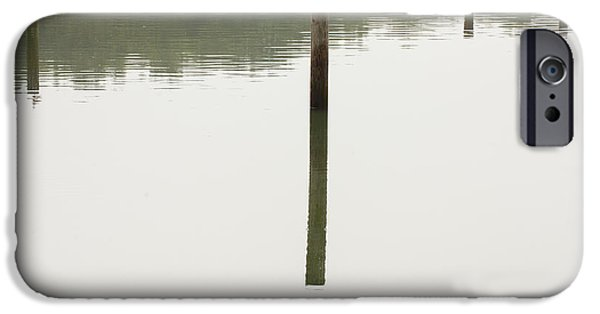Reflecting Poles IPhone Case by Karol Livote