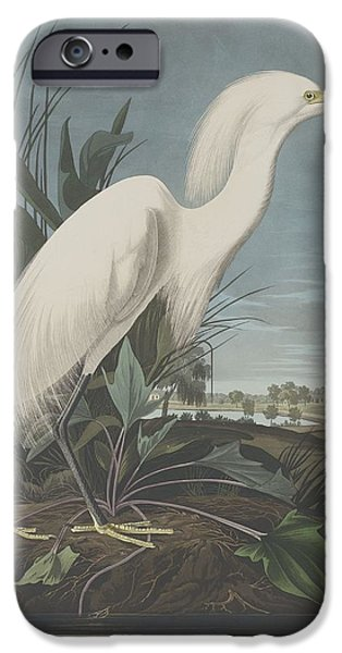 Snowy Heron Or White Egret IPhone Case by John James Audubon