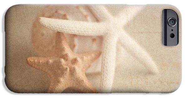 Starfish Still Life IPhone Case by Tom Mc Nemar