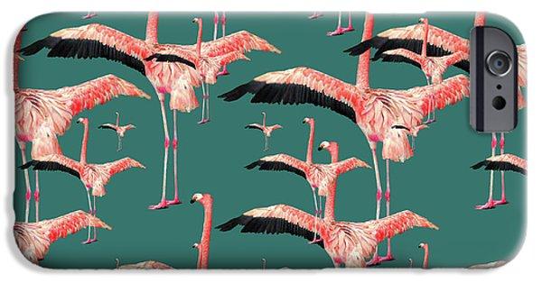 Tropical Flamingo  IPhone Case by Mark Ashkenazi