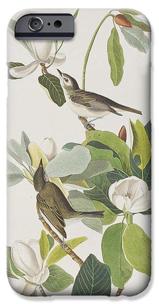 Warbling Flycatcher IPhone 6s Case by John James Audubon