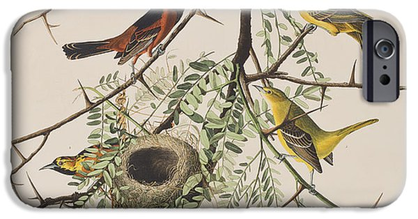 Orchard Oriole IPhone 6s Case by John James Audubon