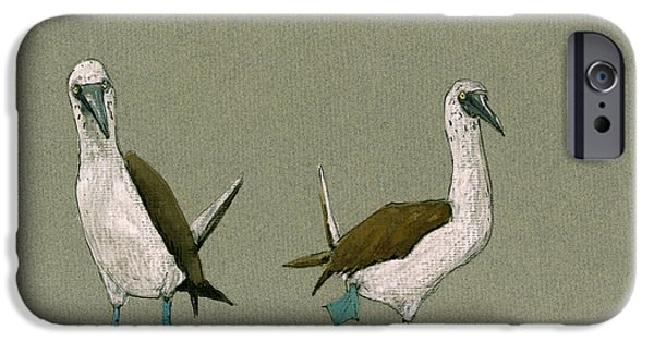 Blue Footed Boobies IPhone 6s Case by Juan  Bosco