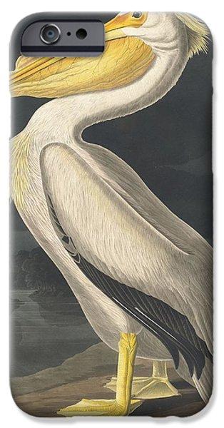 American White Pelican IPhone 6s Case by John James Audubon