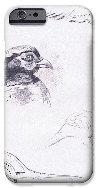 Pheasants IPhone 6s Case by Archibald Thorburn