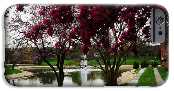 Spring Landscape IPhone Case by Celestial Images