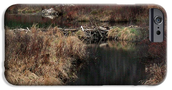 A Beaver's Work IPhone 6s Case by Skip Willits