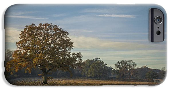 A Frosty Autumn Morning IPhone Case by Chris Fletcher