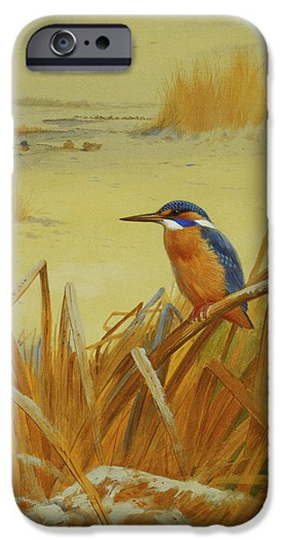 A Kingfisher Amongst Reeds In Winter IPhone 6s Case by Archibald Thorburn