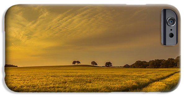 A Line In The Grass IPhone Case by Chris Fletcher
