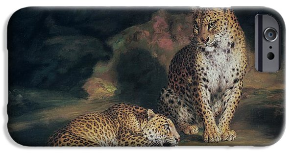 A Pair Of Leopards IPhone 6s Case by William Huggins