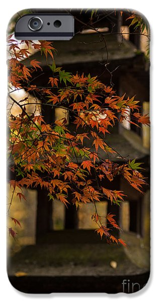 Acer Pagoda IPhone Case by Mike Reid