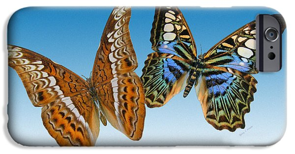 Admiral And Clipper Butterfly IPhone Case by Betsy C Knapp