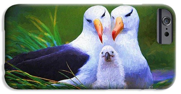 Albatross Family  IPhone Case by Garland Johnson