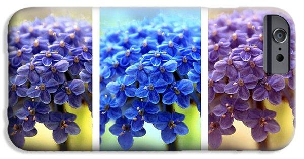Allium Triptych IPhone Case by Jessica Jenney
