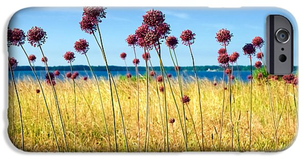 Alliums And The York River IPhone Case by Rachel Morrison